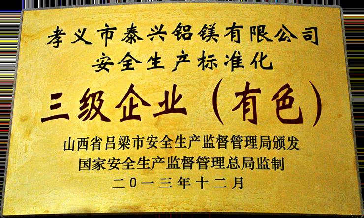 安全生产标准化三级企业(有色)